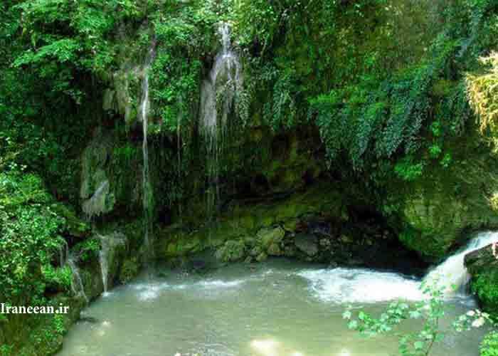 جنگل و آبشار پلنگ دره