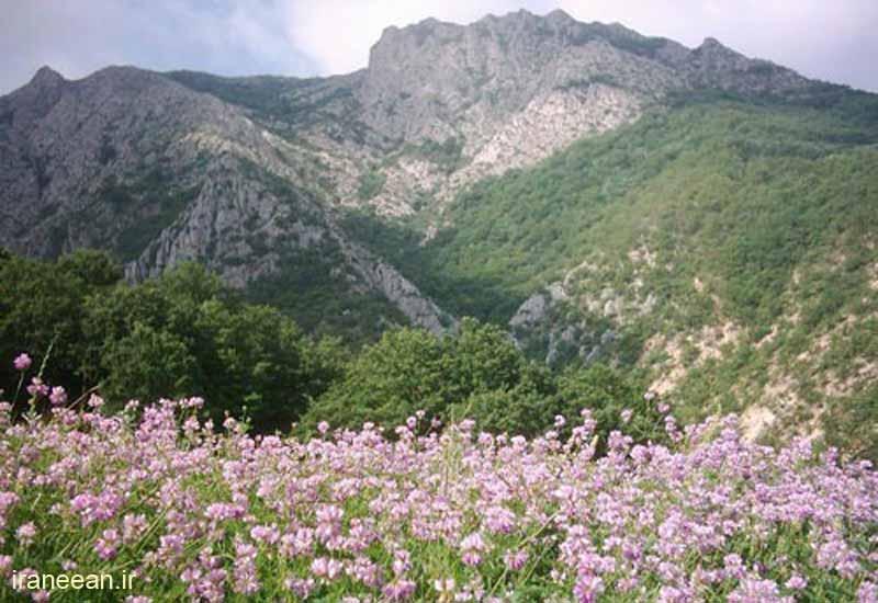 روستای دشت خراسان شمالی