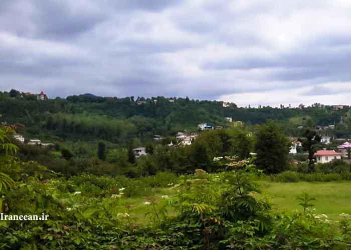 روستای سلیم آباد تنکابن