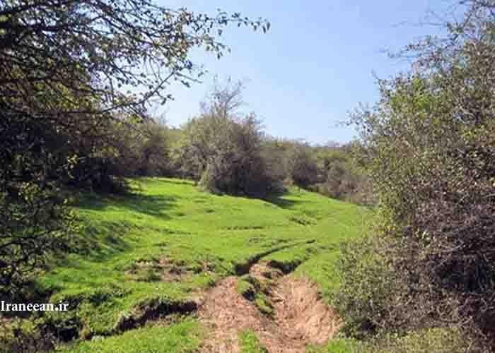 منطقه حفاظت شده بلس کوه